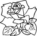 Rose Bold Line Coloring Page