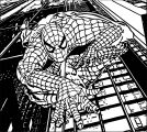 Spider Man Coloring Page WeColoringPage 110