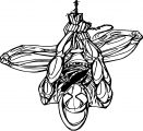 Spider Man Coloring Page WeColoringPage 151