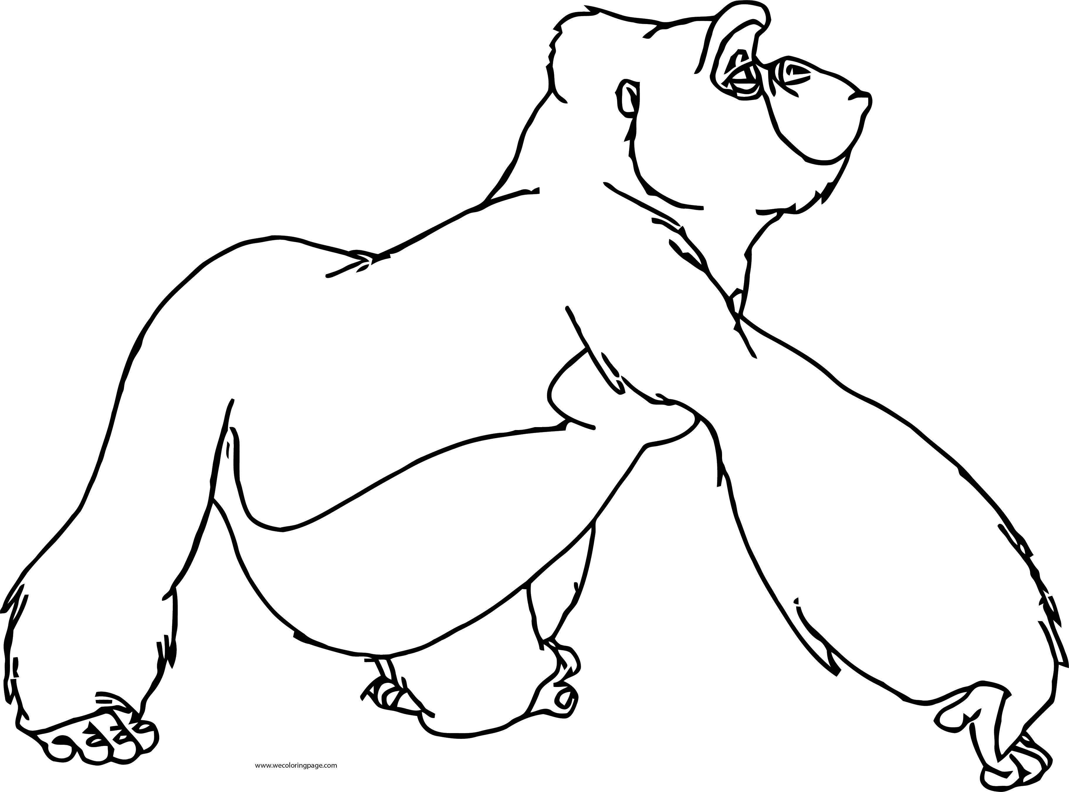 Tarzan Kala And Kerchak Coloring Pages 03