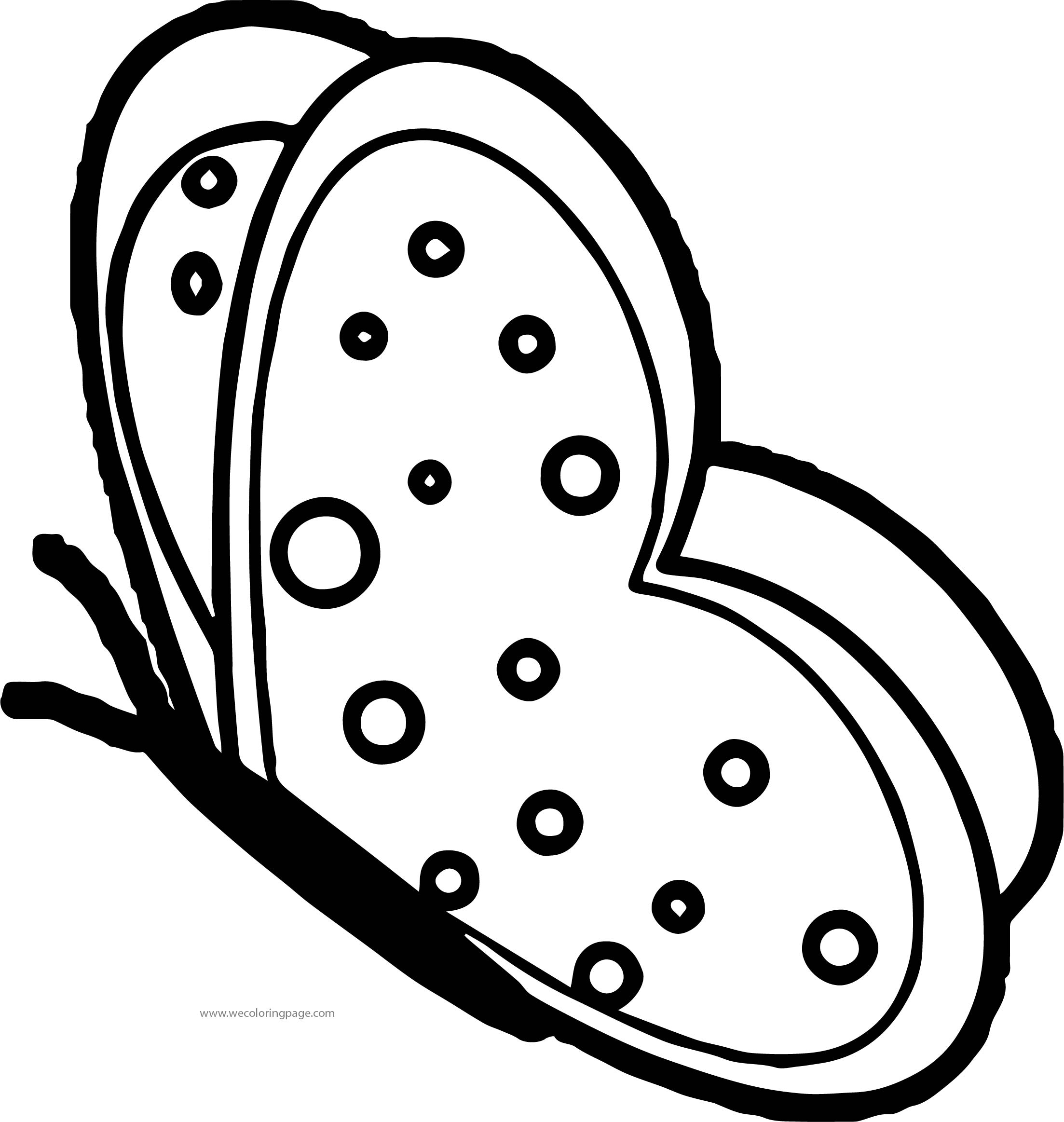 green butterfly md coloring page