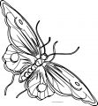 Big Fly Butterfly Clipart Coloring Page