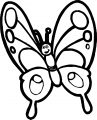 Butterfly Coloring Page 22