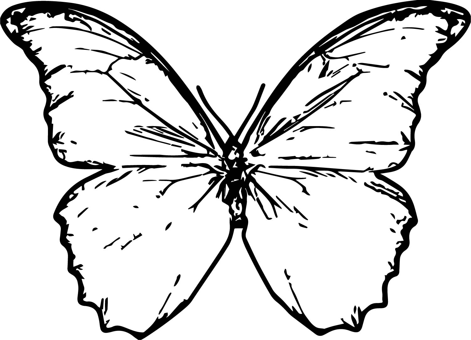 Butterfly Coloring Page 31