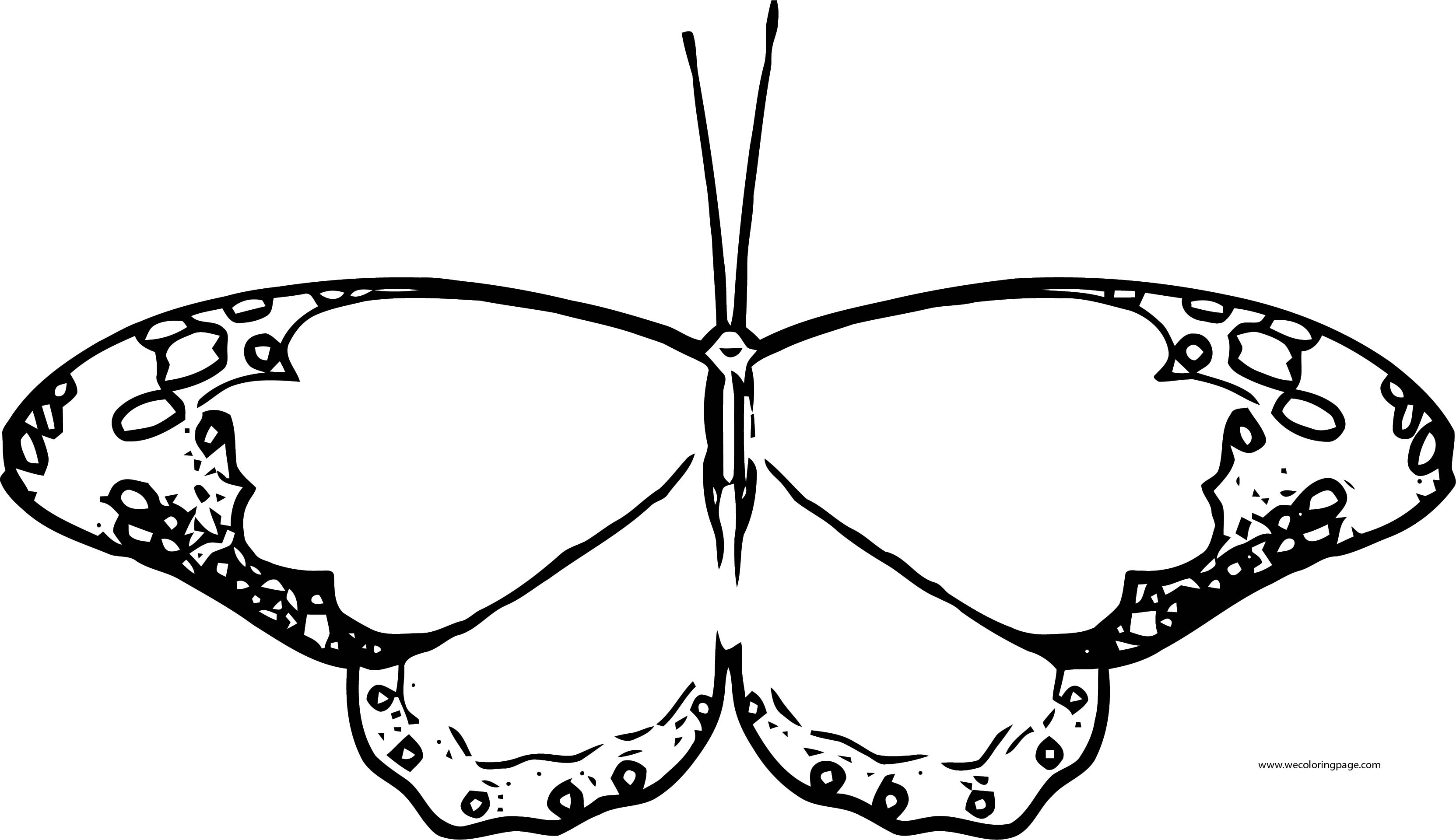 Butterfly Coloring Page 44