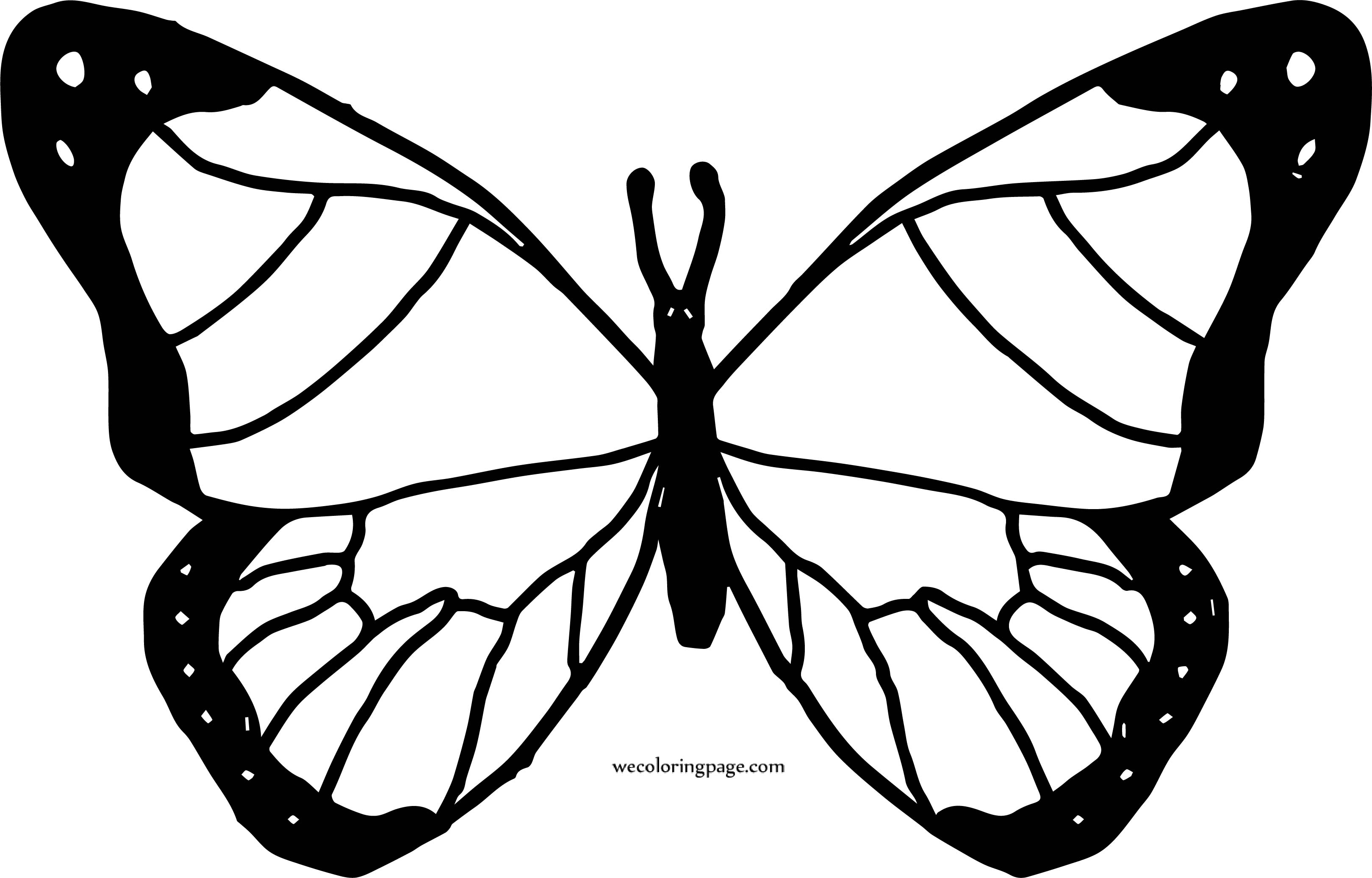 Butterfly Coloring Page 47