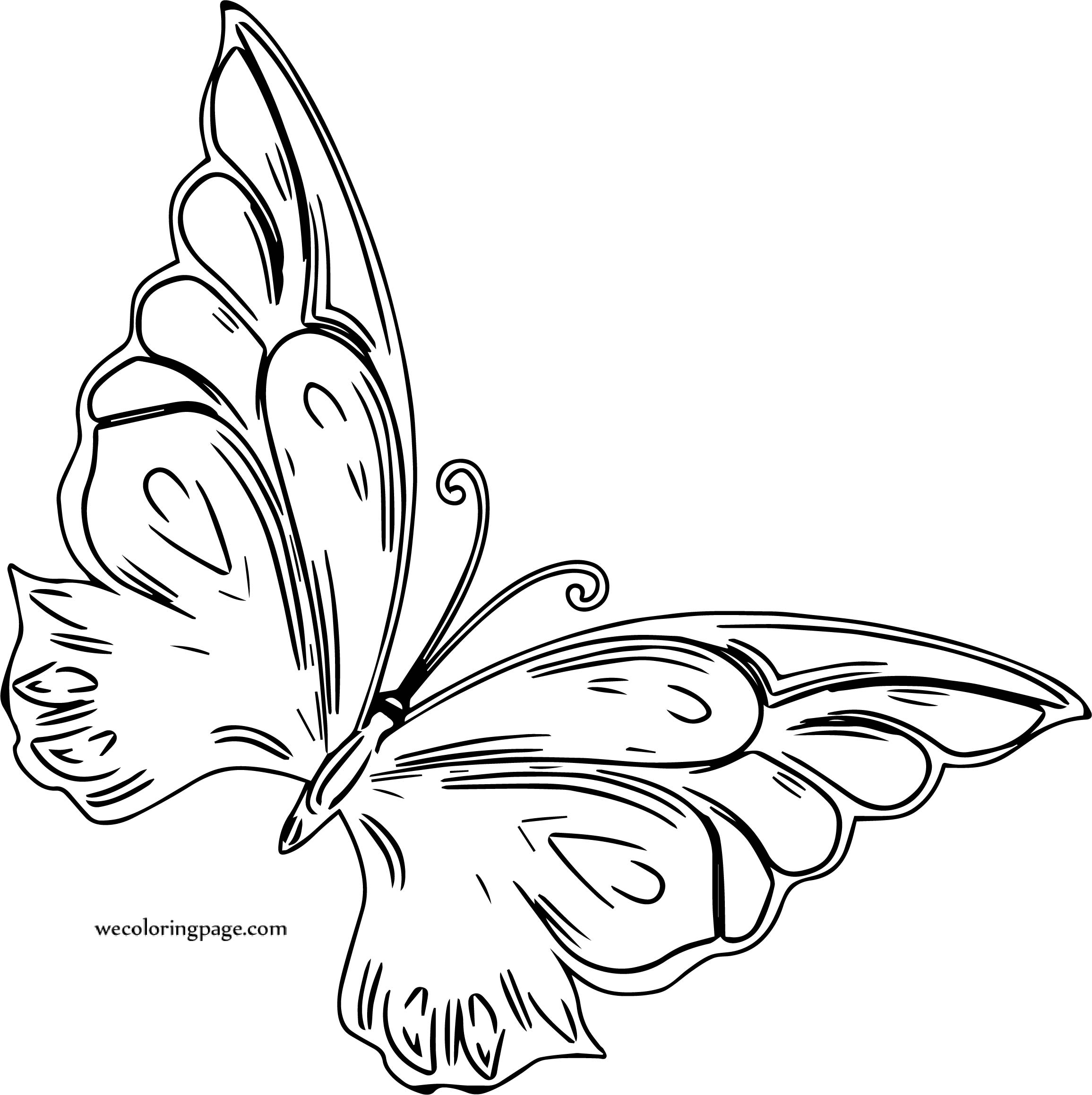 Butterfly Coloring Page 59