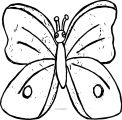 Butterfly Images Coloring Page
