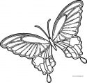 Cartoon Blue And Purple Butterfly Clipart Coloring Page