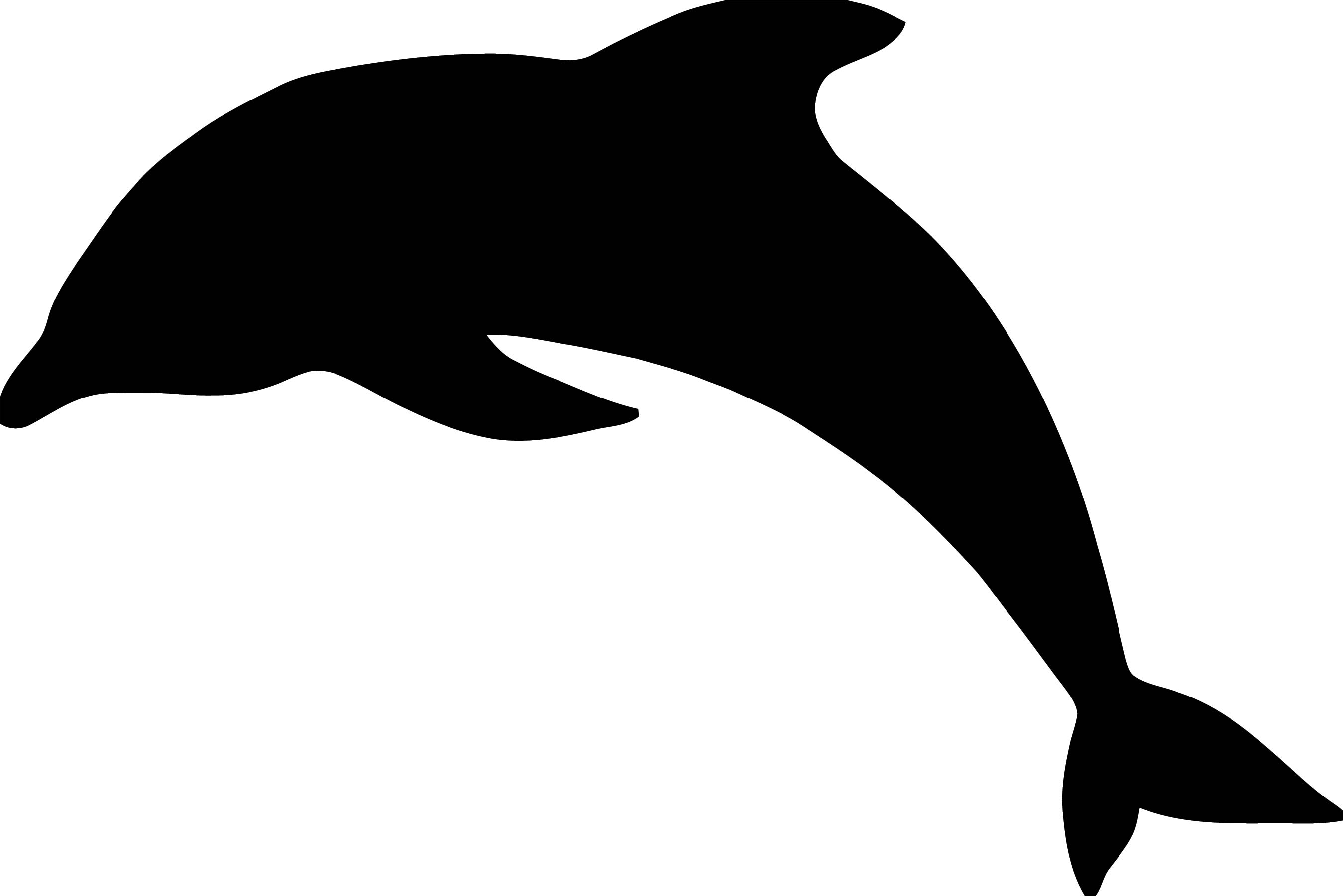 Dolphin Coloring Page 117