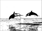Dolphin Coloring Page 126