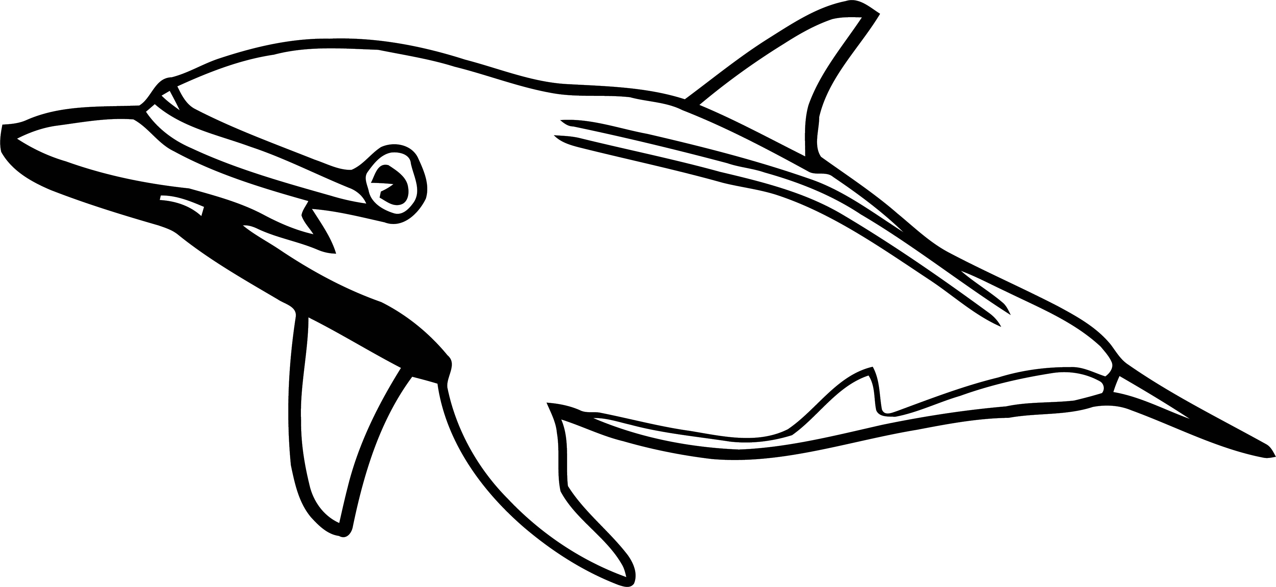 Dolphin Coloring Page 127 | Wecoloringpage.com