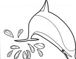 Dolphin Coloring Page 136