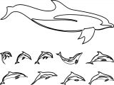 Dolphin Coloring Page 151