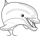 Dolphin Coloring Page 152
