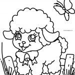 Sheep And Butterfly Cute Coloring Page