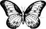 Top Pixel Butterfly Coloring Page
