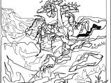 Art Mountain Landscape Coloring Page 8
