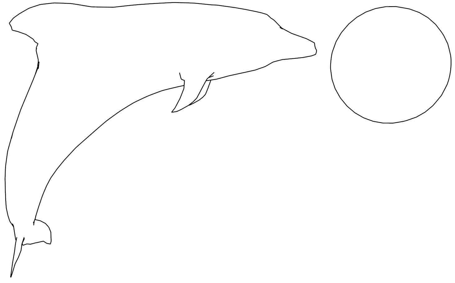 Dolphin Coloring Page 2