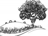 The Natural Landscape Cartoon Coloring Page