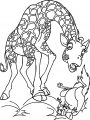 Disney The Wild Coloring Pages 20