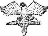 Let Parrot Coloring Page