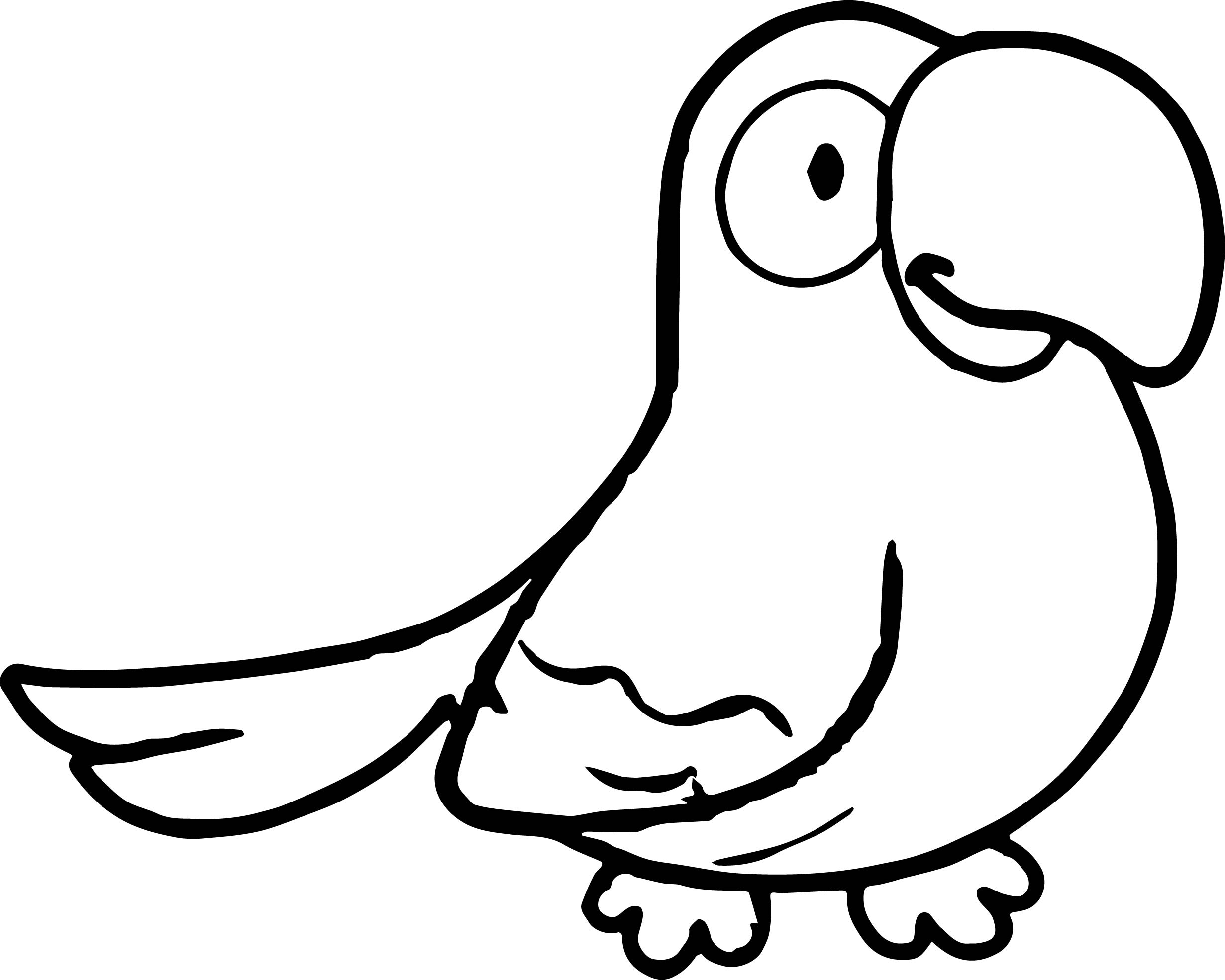 Parrot Coloring Page 024