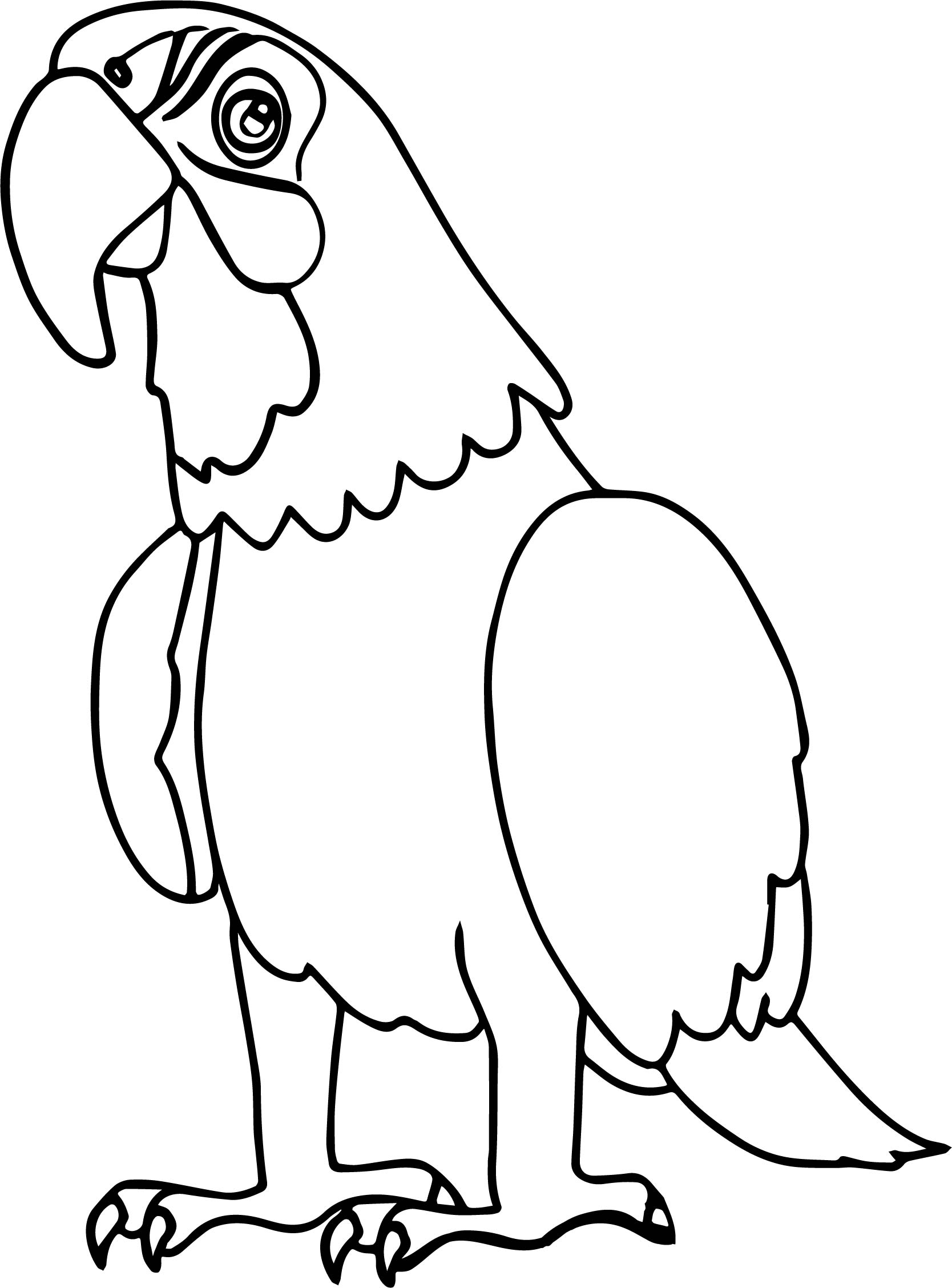 Parrot Coloring Page 028