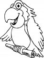 Parrot Coloring Page 042