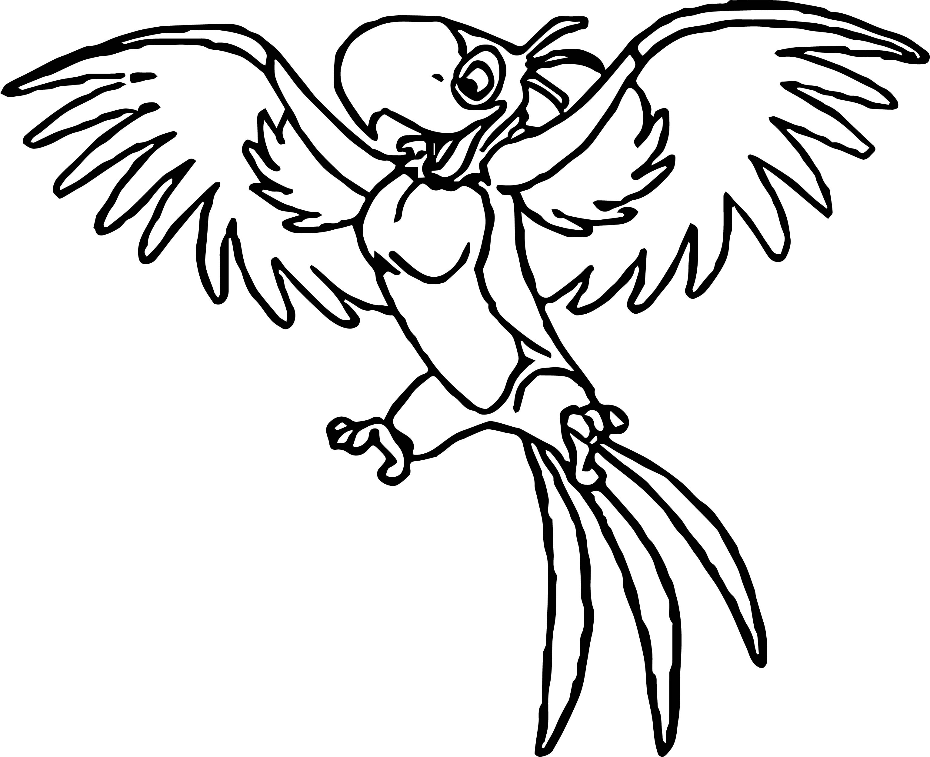 Parrot Coloring Page 047