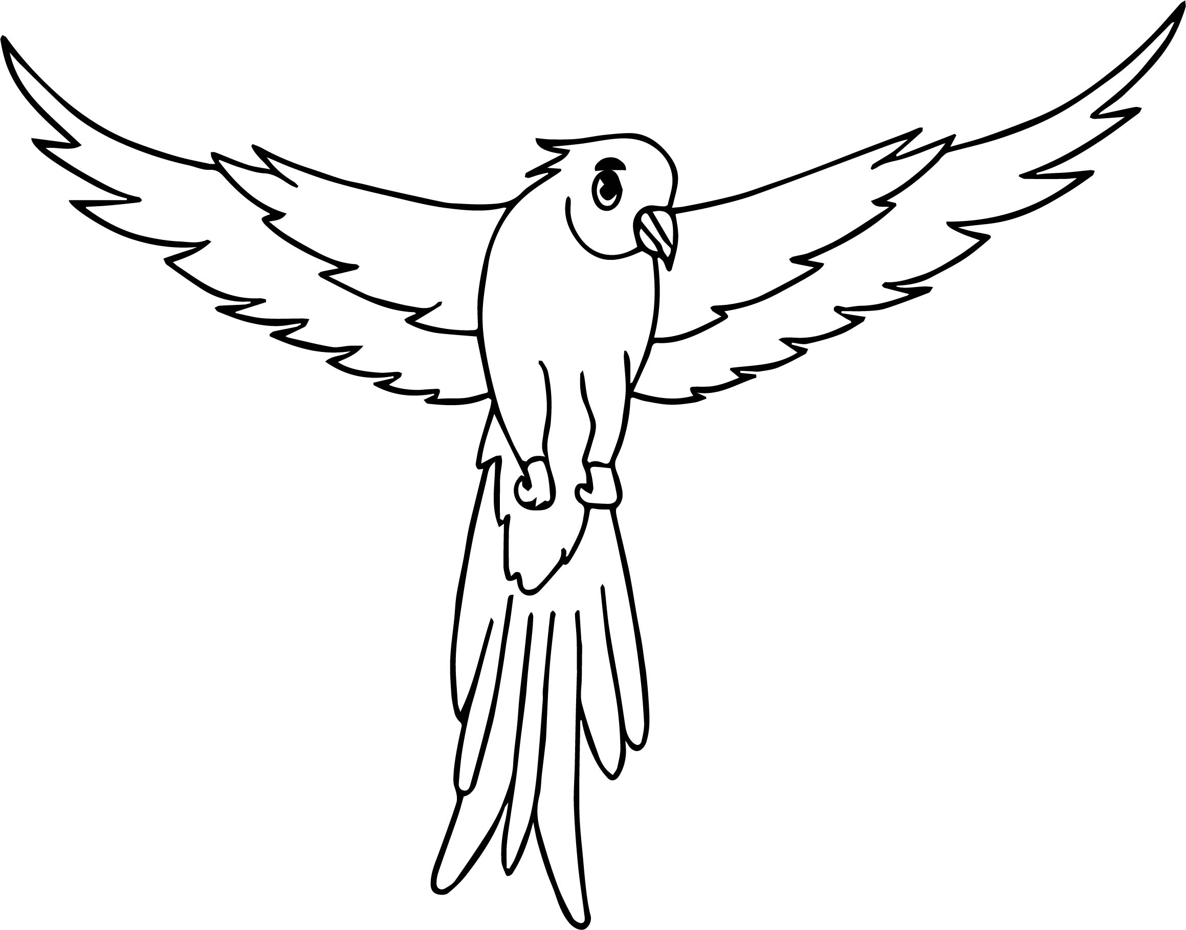 Parrot Coloring Page 055
