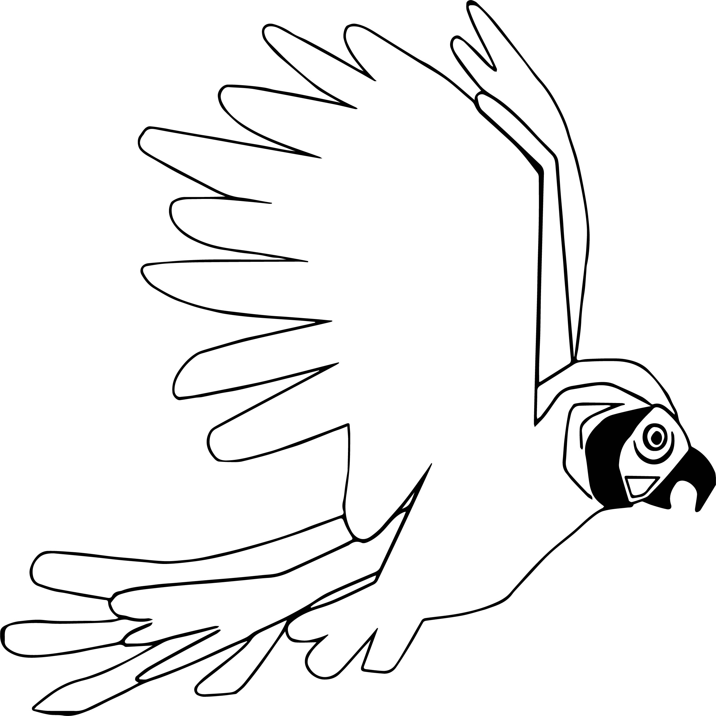 Parrot Coloring Page 067