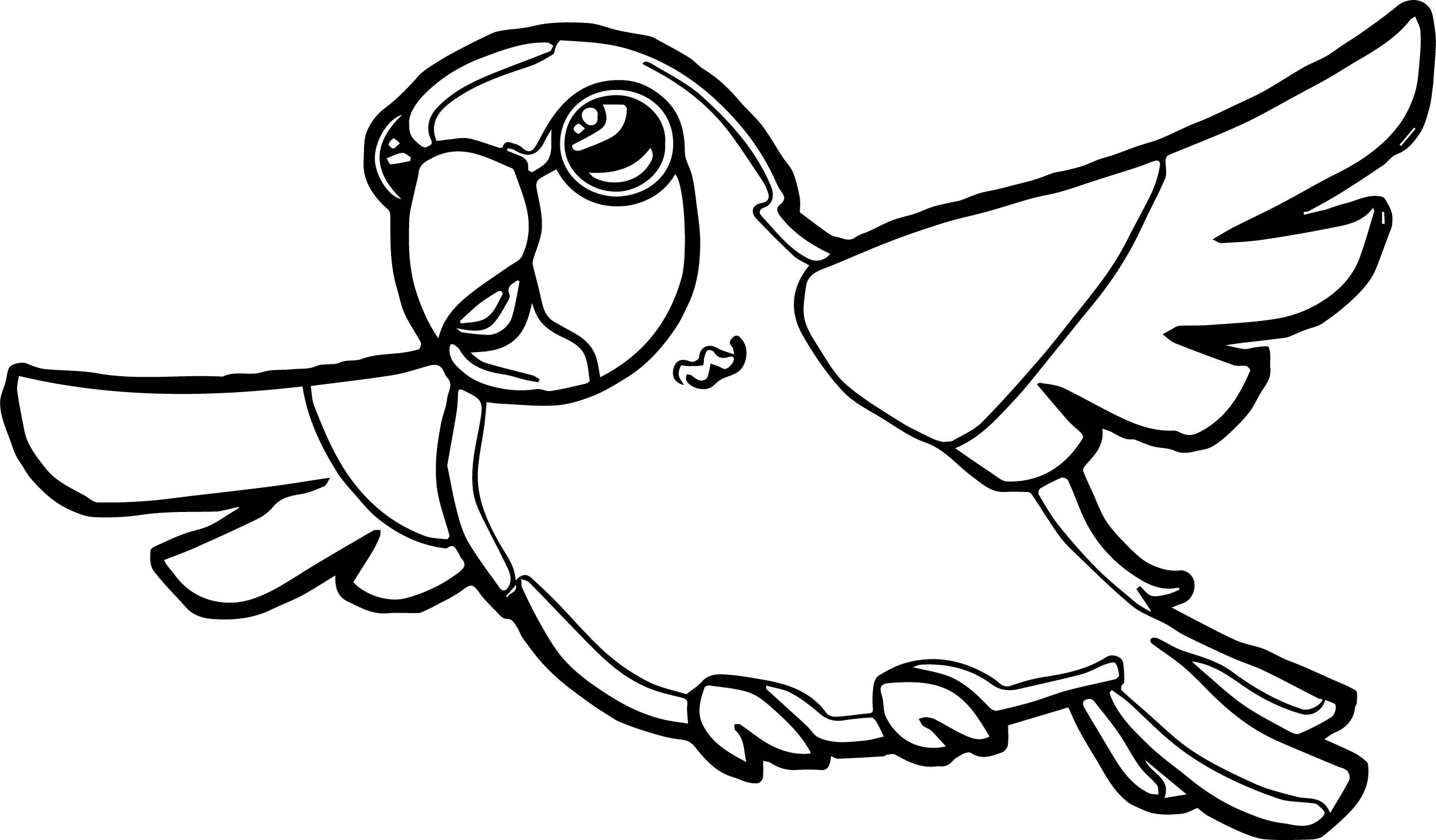 Parrot Coloring Page 078