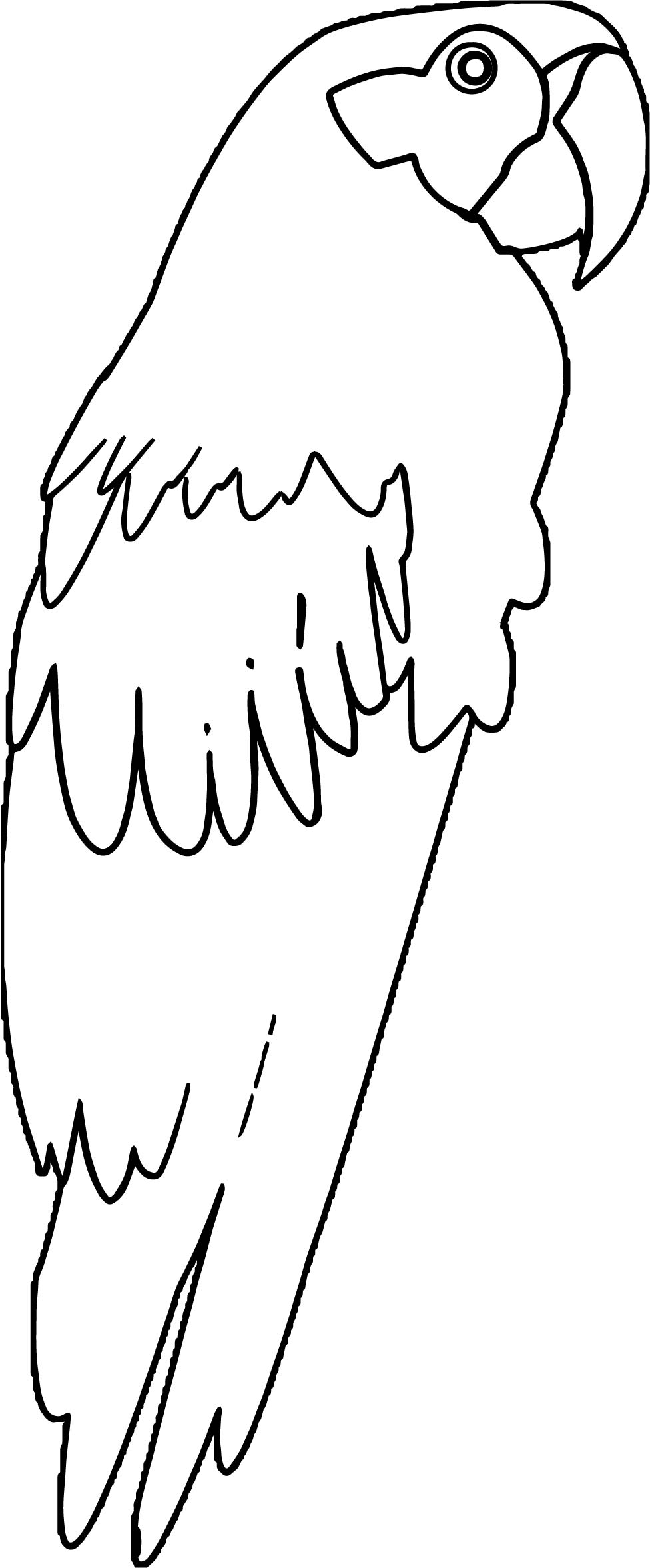 Parrot Coloring Page 084