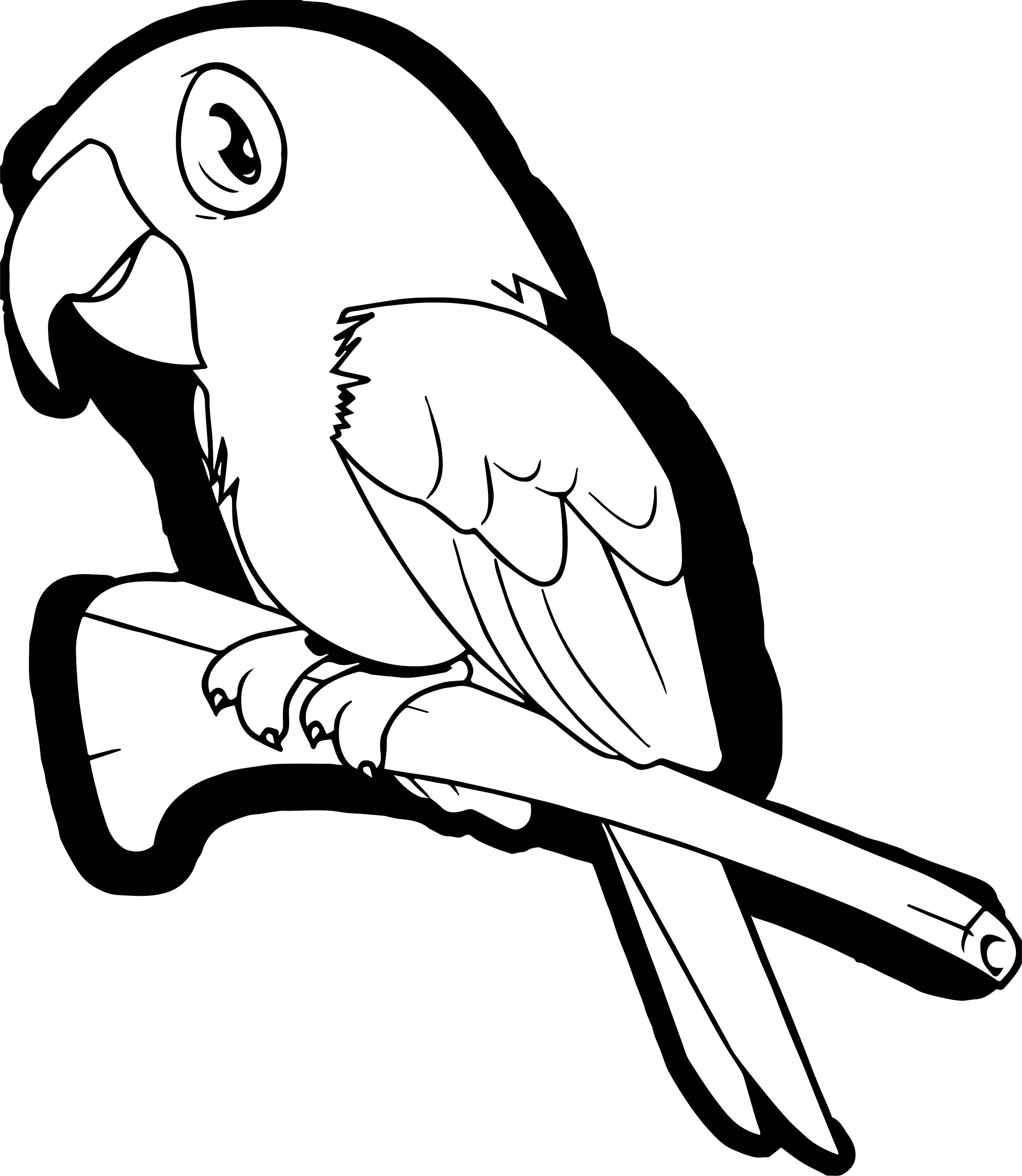 Parrot Coloring Page 095