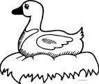 Staying Duck Coloring Page