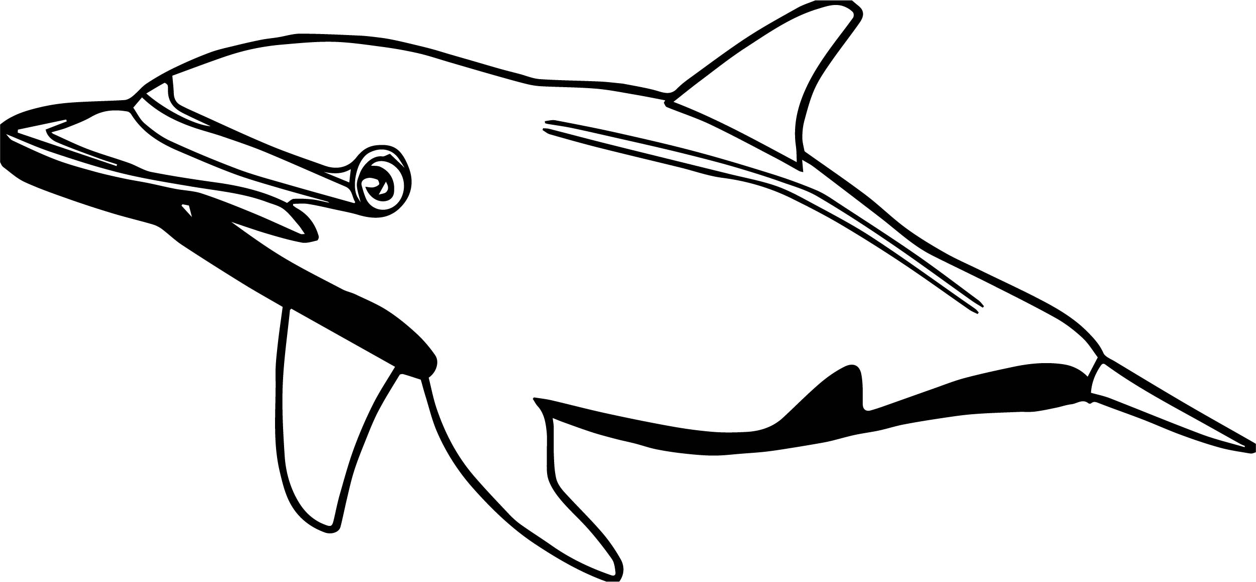Dolphin Coloring Page 007