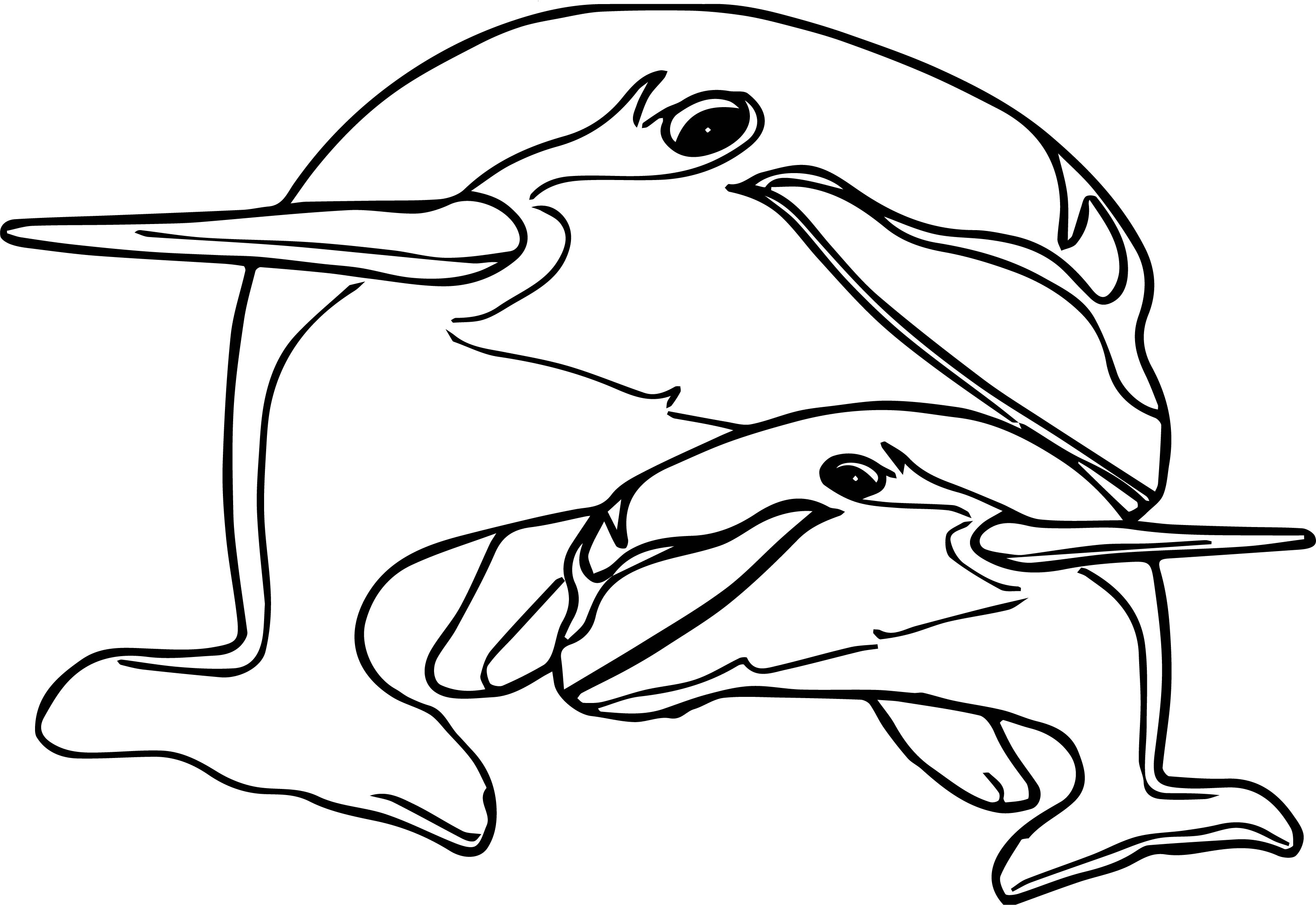 Dolphin Coloring Page 009