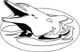 Dolphin Coloring Page 018