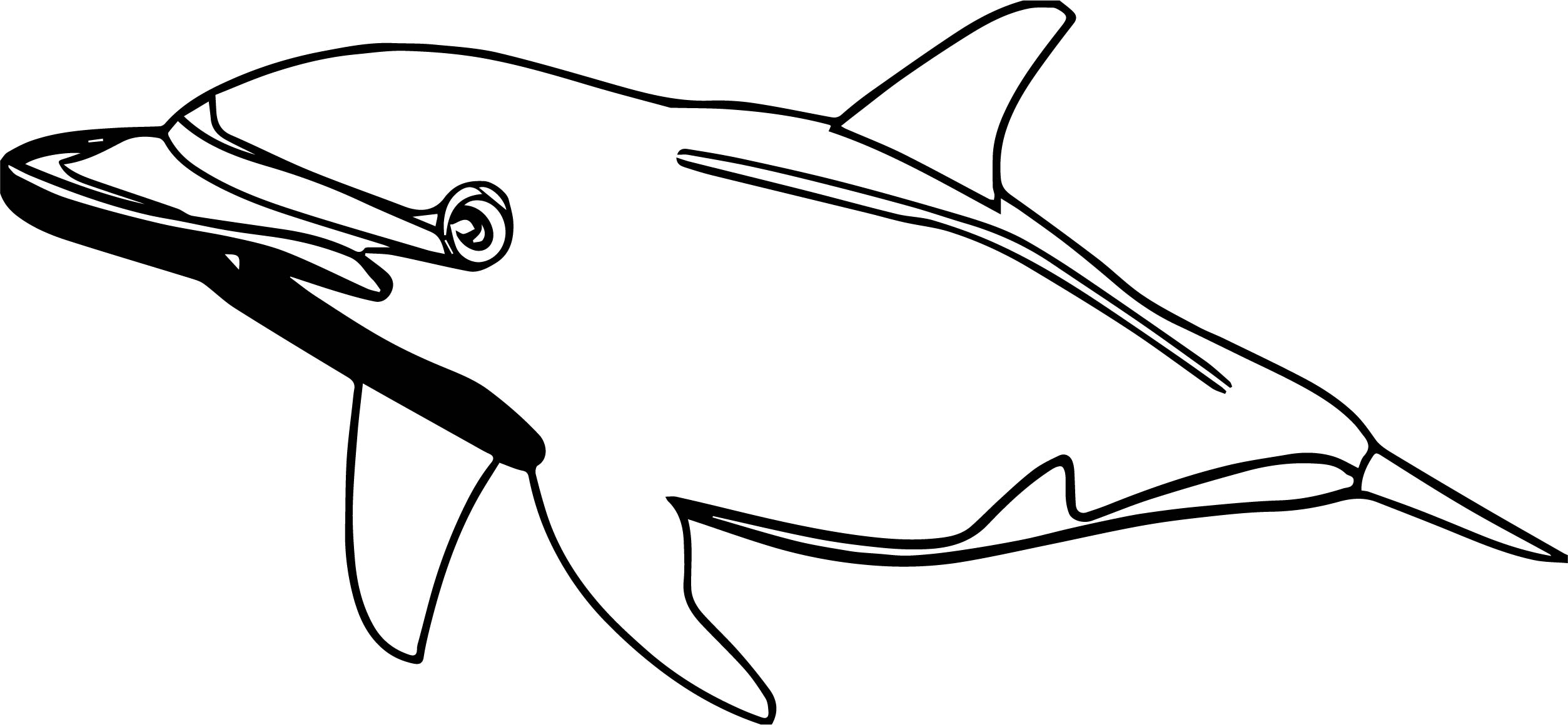 Dolphin Coloring Page 022