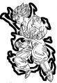 Goku We Coloring Page 246