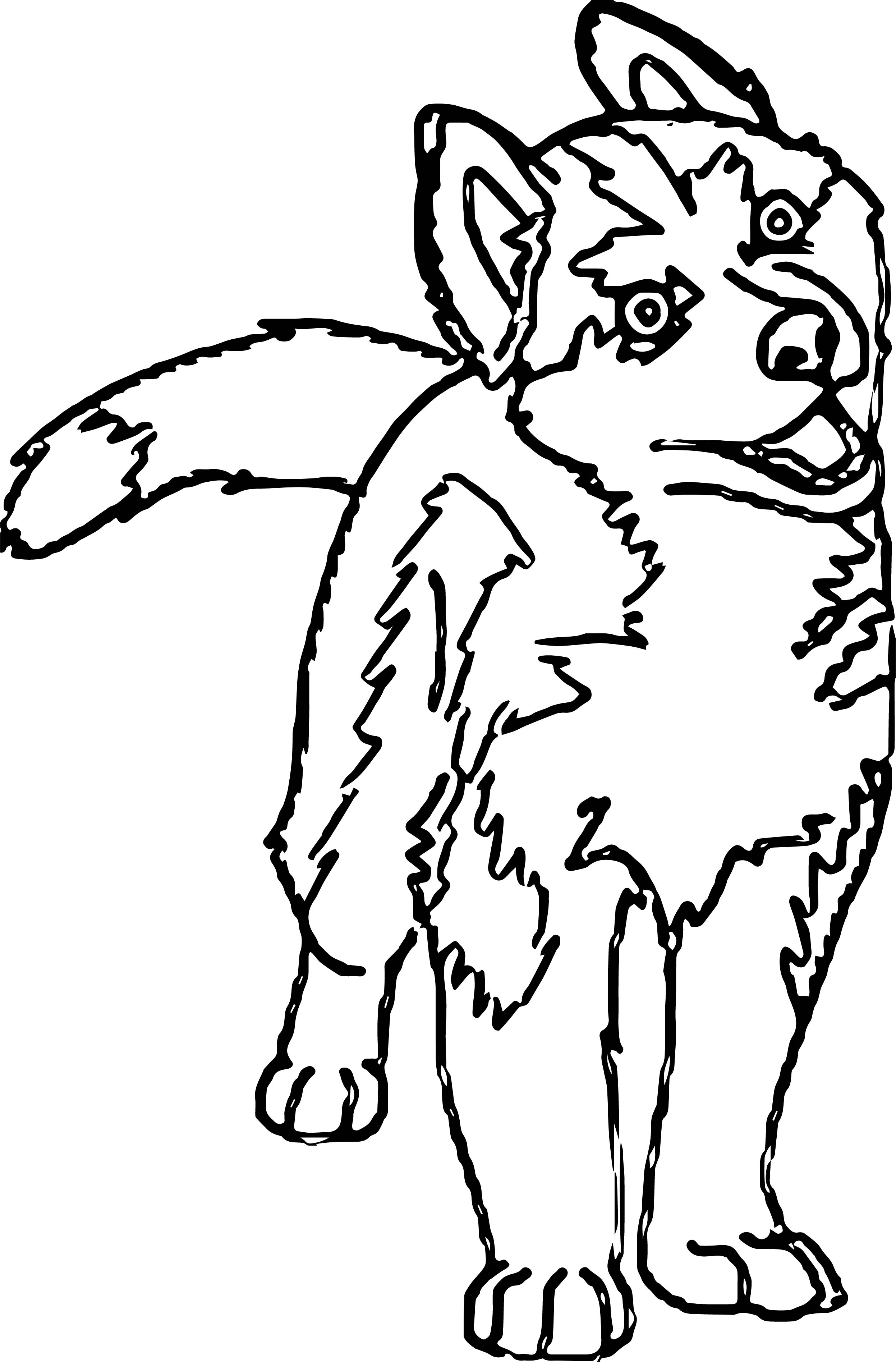 Husky Coloring Page 09