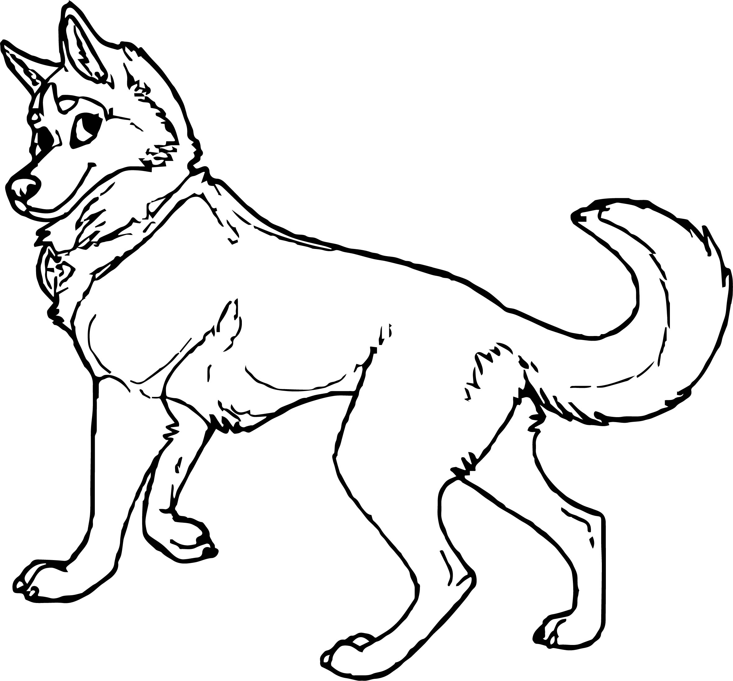 Husky Coloring Page 17