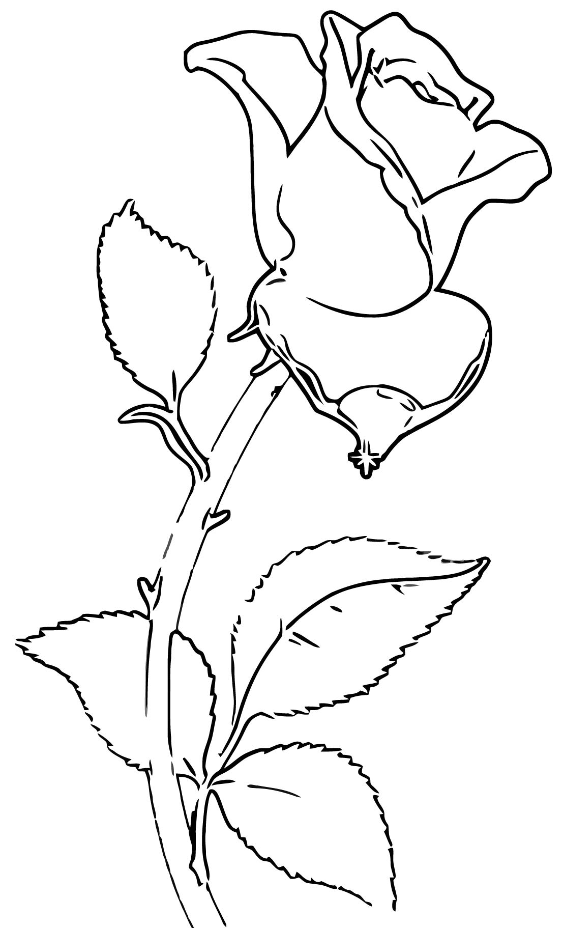 Rose Clip Art #3336 Coloring Page