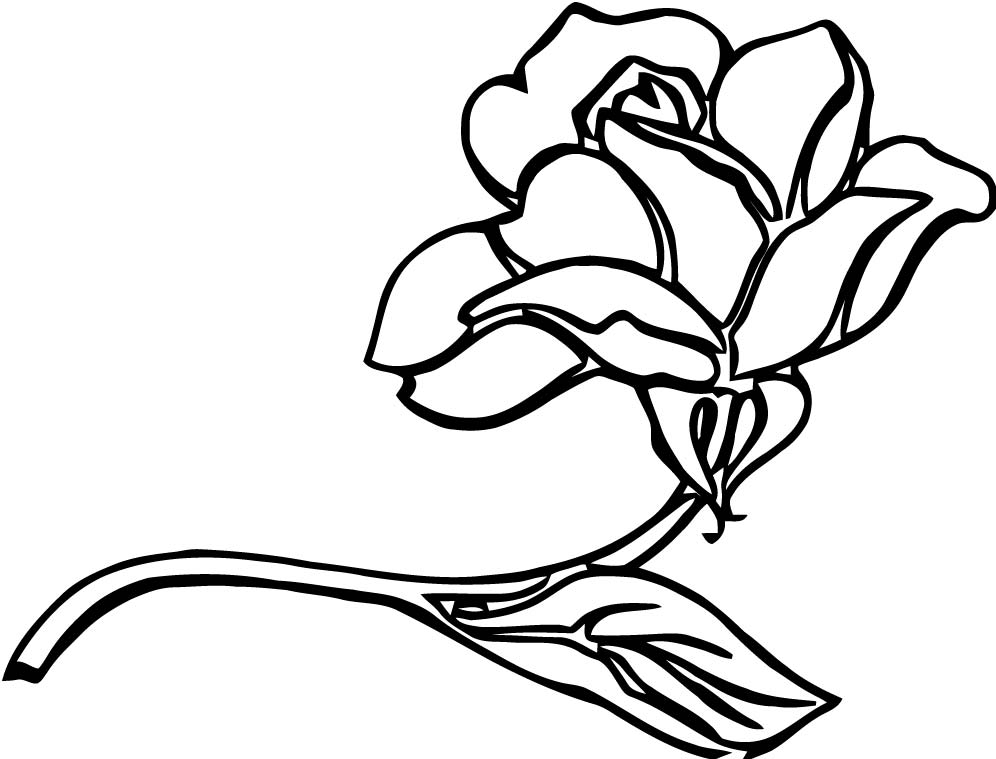 Rose Clip Art 4 Coloring Page