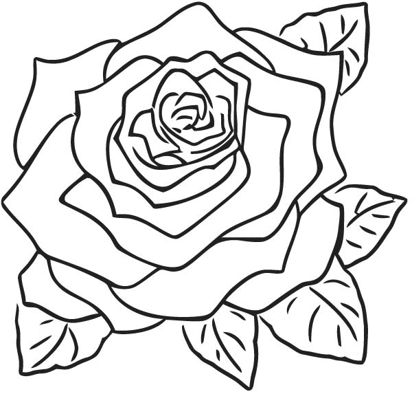 Rose Clip Art N Coloring Page