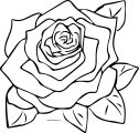 Rose Coloring Page 09
