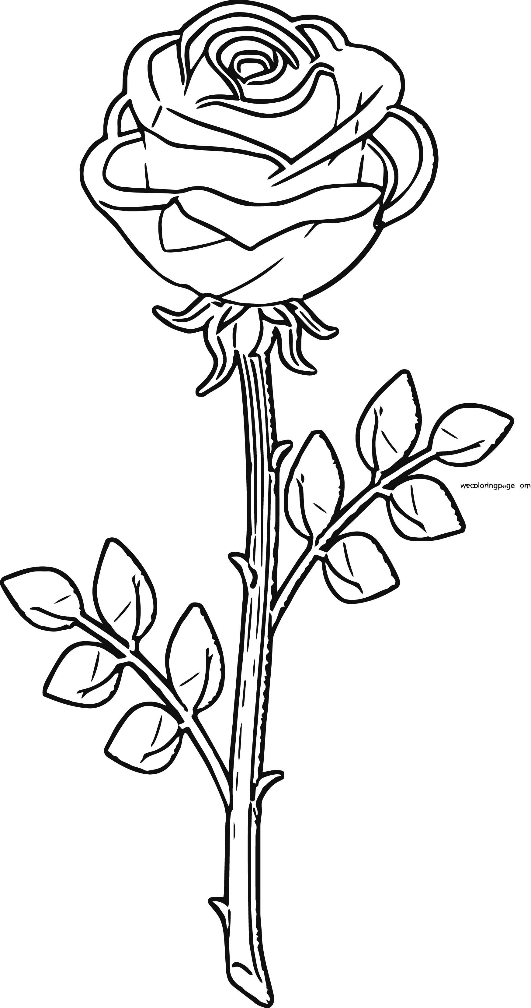 Rose Coloring Page 10