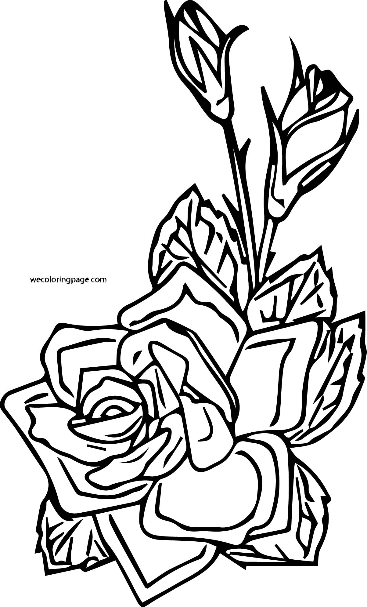 Rose Coloring Page 13