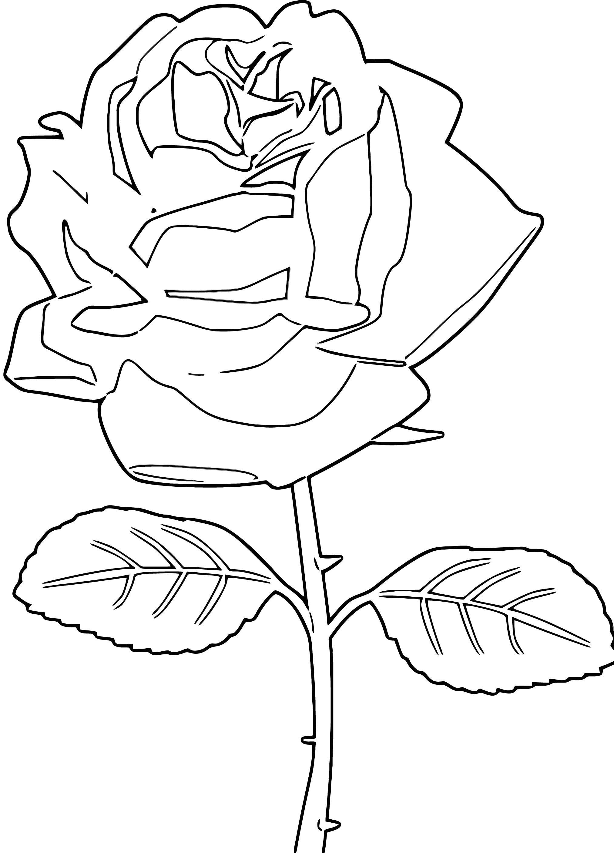 Rose Coloring Page 133